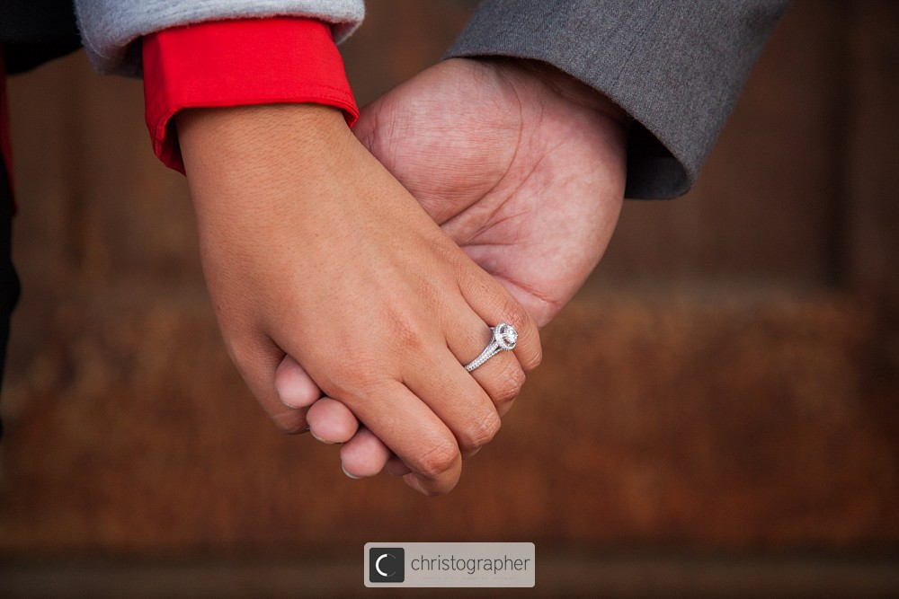 Sonia-Andrew-Engaged-126.jpg